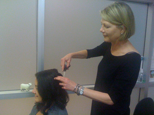 how to cut hair for hair analysis