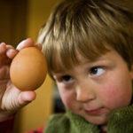 boy-looking-at-egg